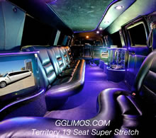 Ford Territory Super Stretch 13 Seat